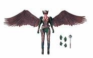 DC Collectibles Hawkgirl
