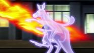 Vixen Kangaroo Power