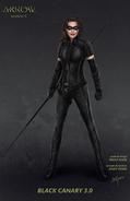 Black Canary concept art