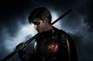 Robin Primer Vistazo