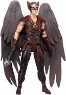 DC Multiverse Hawkman