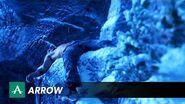Arrow - Survive