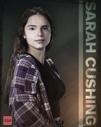 SupermanLois - Sarah Crushing Poster