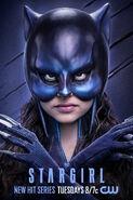 Stargirl - Wildcat poster