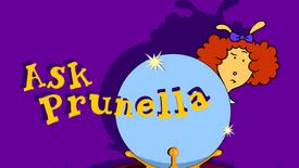 Ask Prunella Splash.png