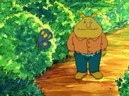 Binky sees a butterfly