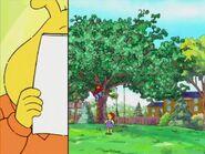 The Cherry Tree 124