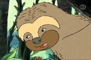 1103a 08 Sloth