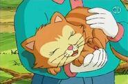 1210b 02 Buster Cat