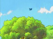 The Cherry Tree 001