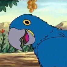 1103a 10 Macaw fantasy.jpg