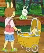 Unknown Female Adult Rabbit
