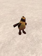 Arrogant Penguin Live.jpg