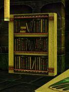 Bookshelf (Citadel Library - Yalain) Live