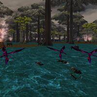 25.0S, 56.8E - Swamp Corpses Live
