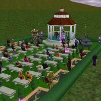 Wedding of Borelean and Hoshino Live