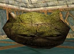 Head of the Homunculus