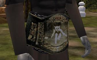 Drudge Championship Belt