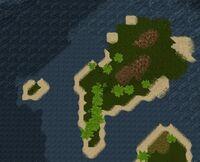 MacNiall's Island Live