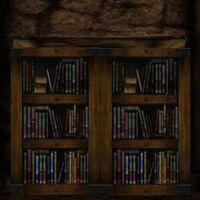 Bookcase (Bandit Hideout) Live