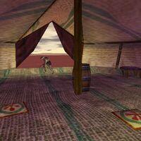27.4S, 12.8E - Drudge Tent Live 2