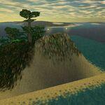 Savao Island Live 2.jpg