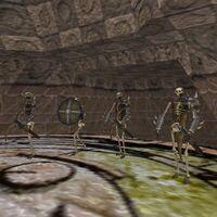23.5S, 63.6E - Skeleton Temple Live 3