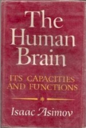 A human brain.jpg