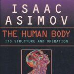A human body rev.jpg