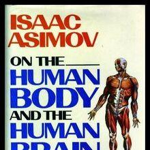 A human bnb.jpg