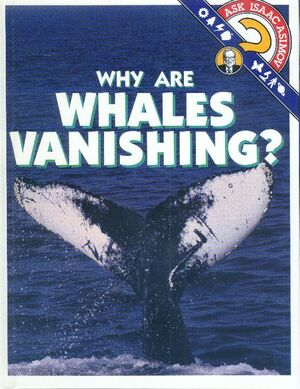 A why are whales vanishing.jpg