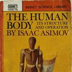 A human body q.jpg