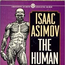A human body p rev.jpg