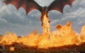Dragon Fire Toasty.jpg