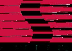 Saleen logo.png