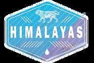 A9 Himalayas Logo