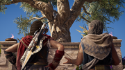 ACOD Olympic Tree - Kassandra and Barnabas