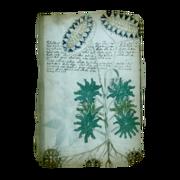 ACIV Folio 33v