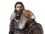Halfdan Ragnarsson
