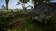 ACV Wolves hunting