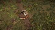 ACV Eivor assassinate Ruaidrí