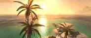 ACIV palmiers horizon