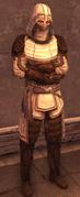 Male Assassin Level 2 Armor