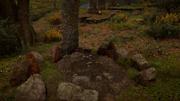 ACV Svend's Grave