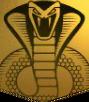 ACO The Snake Symbol