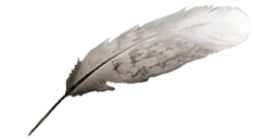 Feather ac2.png