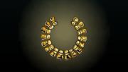 ACP Treasure Turtle Necklace