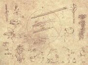 Codex 21.jpg