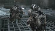 Trois adeptes de Romulus