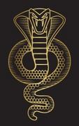 ACO The Snake